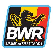 logo_bwr
